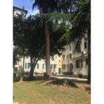 appartamento-vendita-roma-testaccio-bodoni-1039-bodoni5