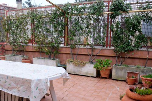 appartamento-vendita-roma-grotta-perfetta-1101-DSCF3550