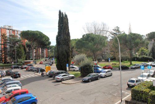 appartamento-affitto-roma-salario-prato-della-signora-1105-DSC_0482