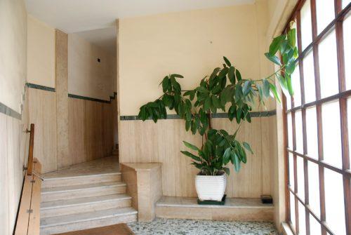 appartamento-affitto-roma-san-paolo-1156-DSC_0294