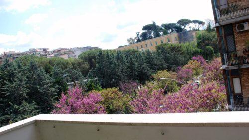 appartamento-affitto-roma-garbatella-ad-c-ne-ostiense-1176-DSC_0988-2