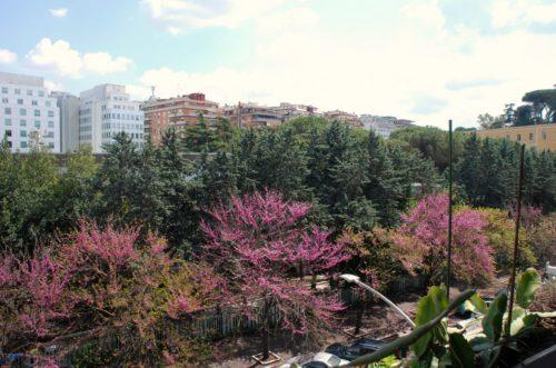 appartamento-affitto-roma-garbatella-ad-c-ne-ostiense-1176-DSC_0990