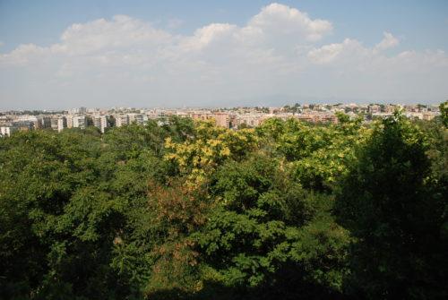 appartamento-vendita-roma-somalia-ad-mascagni-1172-DSC_0092